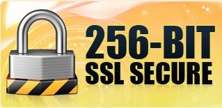 256 Bit SSL Security