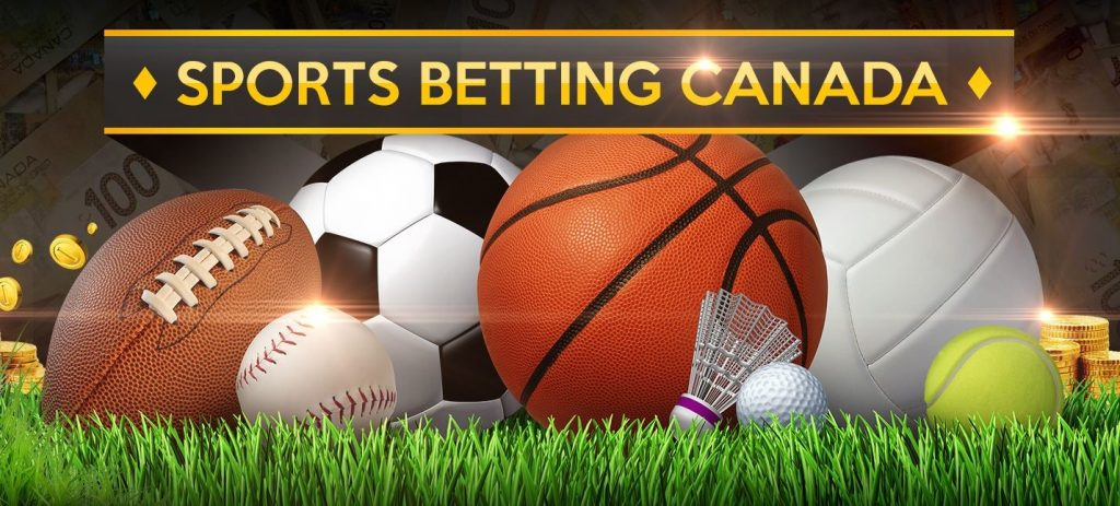 Best Sportsbooks and Boxing Betting Options for Canadian Online Players